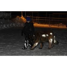Refleks spray til dyr